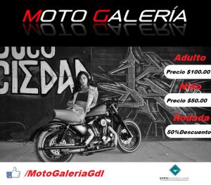 motogaleria5